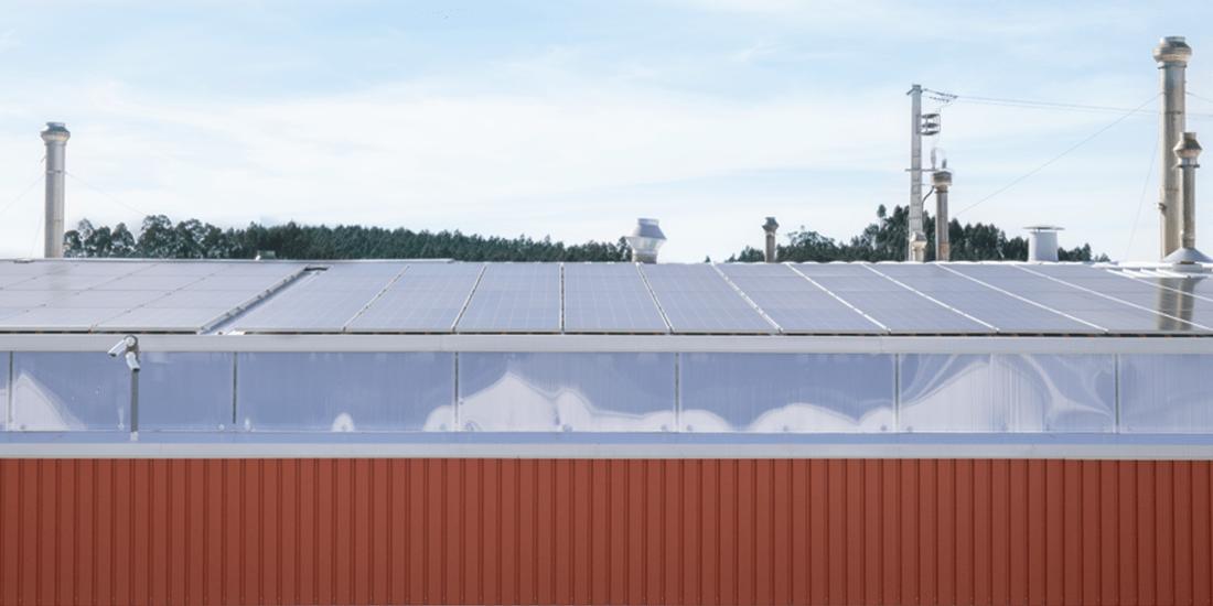 Por um Mundo mais Sustentável